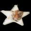 Star Reflexklisterlapp med reklamtryck